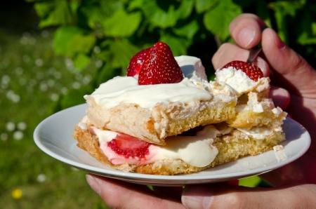 Strawberry dessert Stock Photo - 14087153