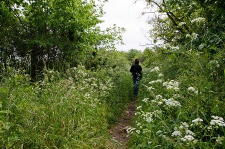 Green footpath photo