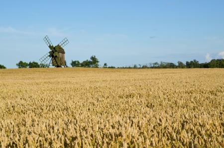 Alte Windmühle in einem Weizenfeld Lizenzfreie Bilder