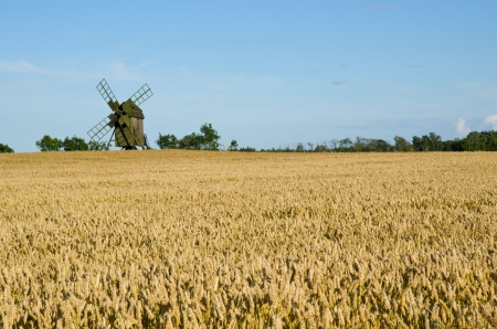 Old windmill in a wheat field Stock Photo