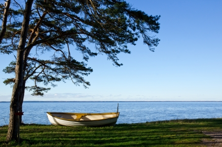 oland: Rowing boat under a pine tree Stock Photo