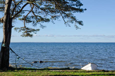 White rowing boat tied up at coast Stock Photo - 16125004