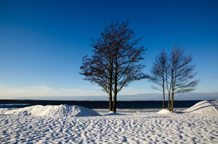 Winter view Stock Photo - 16795760