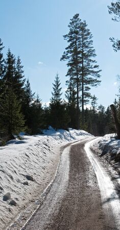Country road Stock Photo - 17275176