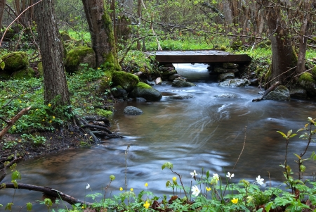 Streaming water Stock Photo - 17275309