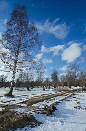 Winter view Stock Photo - 17442704