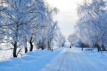White road view Stock Photo - 17443206