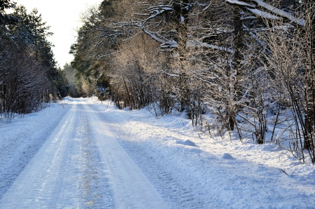 Winter road Stock Photo - 17443205
