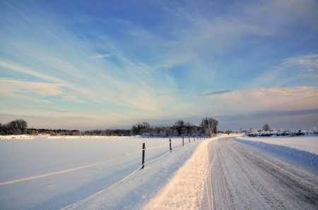 Sunny winter landscape photo