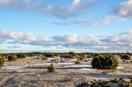 oland: A frosty springtime morning at The Great Alvar Plain, an unique landscape at the island Oland in Sweden