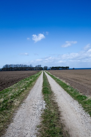 oland: Dirt road through an agricultural landscape on the swedish island Oland