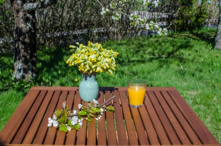 A glass of juice on a decorated table in garden at springtime Stock Photo - 19605793