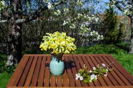 Spring flowers on a table in garden at springtime Stock Photo - 19605792