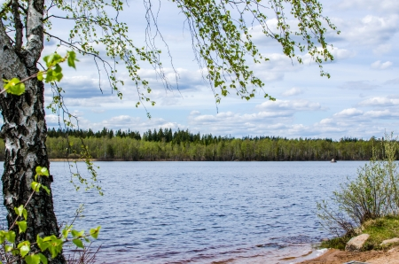 View over a lake at springtime in the province Smaland in Sweden 写真素材