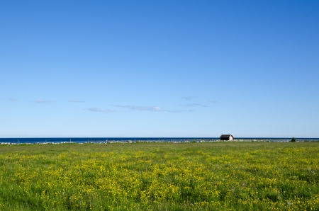 Landscape by the coast of the Baltic Sea. From the island Oland in Sweden. photo