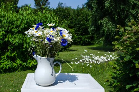 Bouquet of blue and white summer flowers outdoors in a garden photo