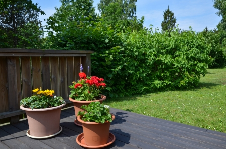 Flowerpots decoration in a green garden photo