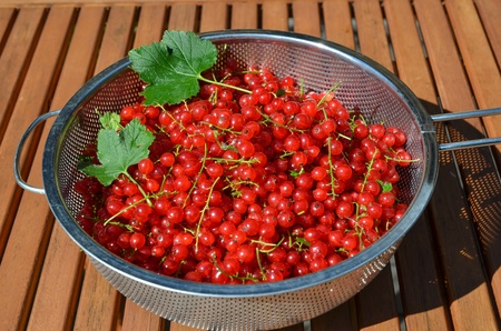 Bowl with red currants on a wooden table Stock Photo - 21764069