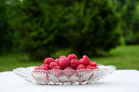 Fresh raspberries in a glass bowl on a table with green background Stock Photo - 22172864
