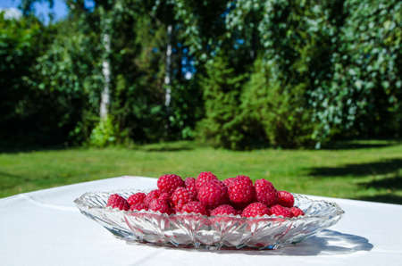 Raspberries in a glass bowl on a table in a green and sunny garden Stock Photo - 22172866