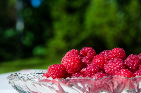 Closeup on raspberries in a glass bowl at green background Stock Photo - 22172867