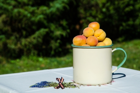 Apricots in an old cup on a flower decorated table outdoors in garden Stock Photo - 22172892