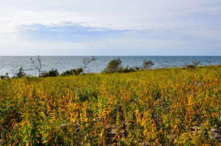 oland: Coloured coast of Baltic sea on the swedish island Oland Stock Photo
