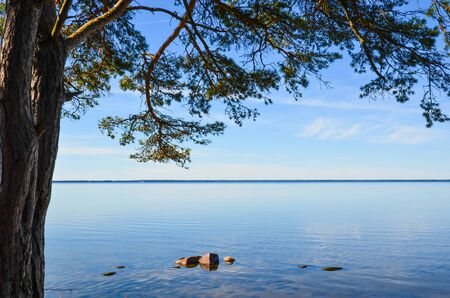 oland: View over the coast of the Baltic sea from the island Oland in Sweden