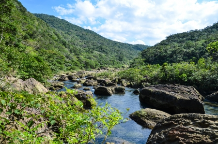 View from the river Urauchi at the tropical japanese island Iriomote