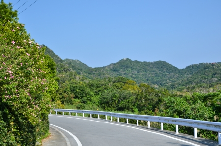 japanes: Road curve with railing at the japanes island Okinawa
