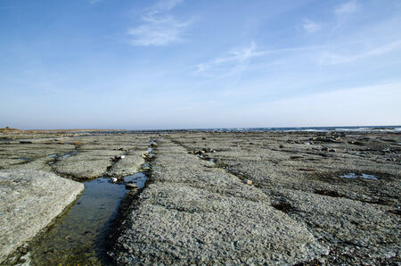 oland: Flat rock coast at the coast of Baltic Sea at the swedish island Oland Stock Photo