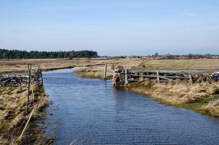 oland: Springtime flooded dirt road at the swedish island Oland Stock Photo