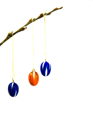 Coloured easter eggs decoration hanging in a twig and isolated on white photo