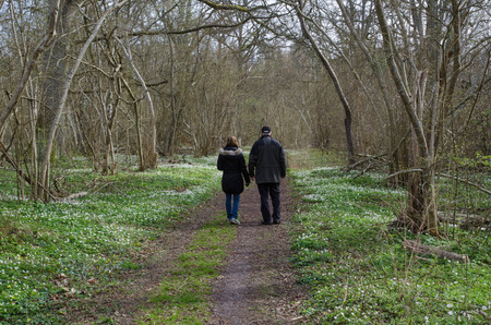 A couple walking at a footpath surrounded of wood anemones