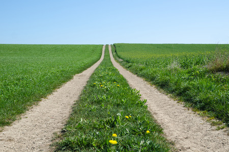 Straight country road in a rural landscape at spring photo