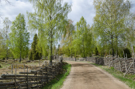 Old fashioned springtime view at a gravel road surrounded of old wooden fences photo