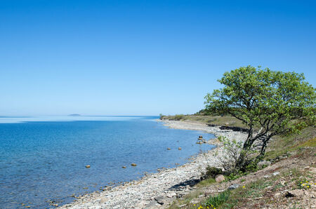 oland: Peaceful coastline with clear blue and calm water at the swedish island Oland in the Baltic Sea
