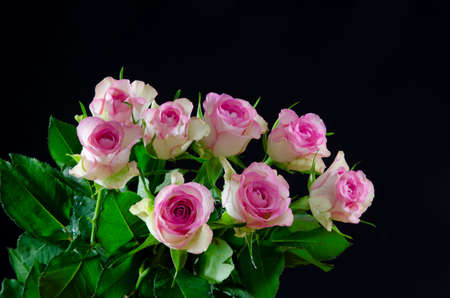Bouquet of fresh pink roses at black background photo