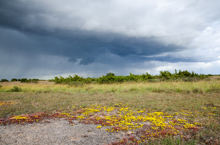 oland: Bad weather coming up over Colourful landscape at the swedish island Oland