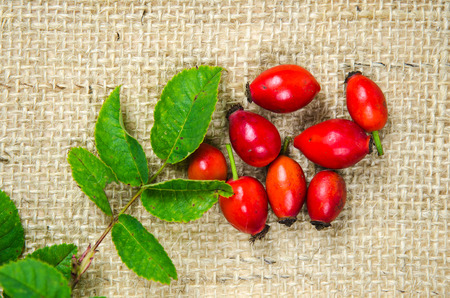 Rosehips berries with green leaves at a rough fabric surface photo