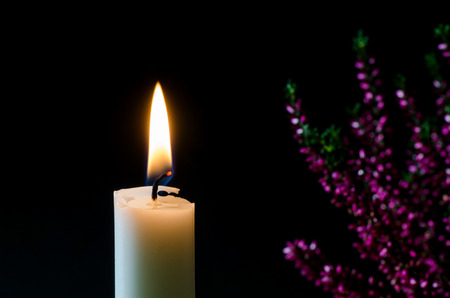 One white burning candle with a blurred heather flower in the background photo