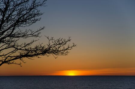 Sunset by the horizon at a lake with bare twigs in foreground. From the Swedish island Oland. photo