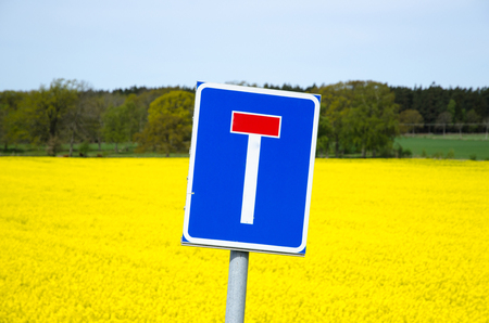 cul de sac: Colorful blind alley roadsign in front of a blosson rapeseed field at the swedish island oland
