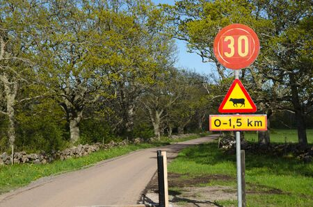 rural road: Country road with road signs in a swedish rural landscape at spring
