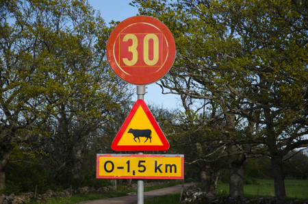 Beware of cattle and speed limit road signs at a country road photo