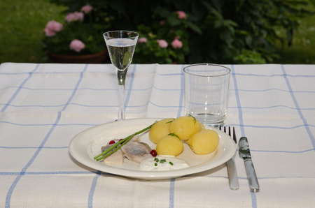 midsummer: Swedish traditional midsummer meal with new potatoes and pickled herring