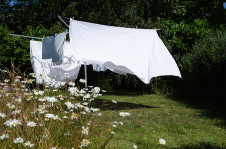 Newly washed white sheets drying at a clothesline in a green garden with daisies