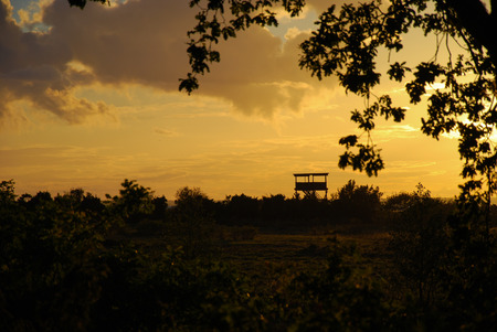 bird watching: Bird watching tower by sunset in a green landscape Stock Photo