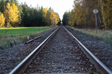 low perspective: Railroad tracks at low perspective in a landscape at fall Stock Photo