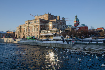 Stockholm, Sweden - January 7, 2016: Winter with a lot of water birds in front of the The Royal Opera House in Stockholm, the capital of Sweden Editorial